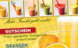 FreshFood-2-Speiseflyer-Angebotsflyer-Gastronomie-Restaurant-DNZ-Networks